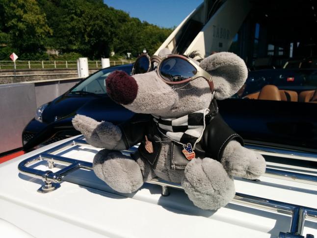 Biker-Ratte
