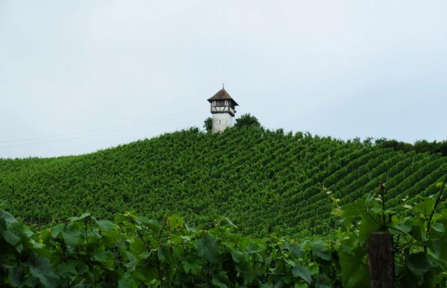 Turm im Weinberg