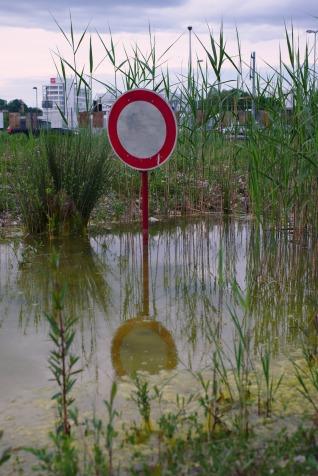 Nicht durch den Sumpf