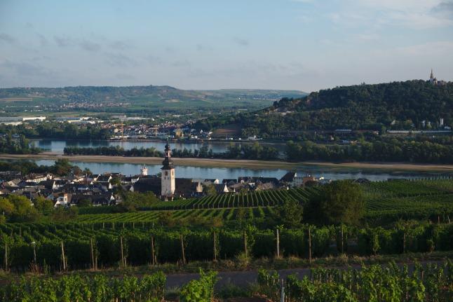 Rüdesheim - Bingen