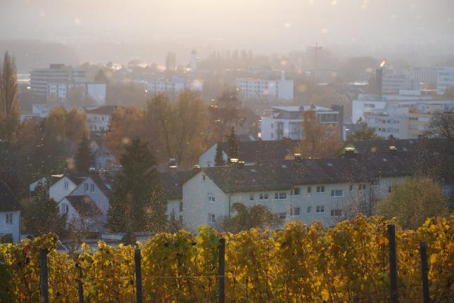 Konstanz Stromeyersdorf