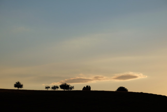 Baum Baum Wolke