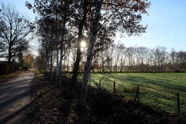 Hochmoorweg